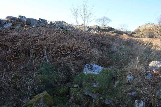 Ffynnon Gwynwy - Llangelynin Photo Wellhopper