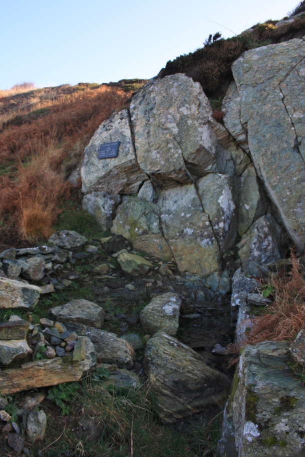 Ffynnon Eilian, Llaneilian. Wellhopper