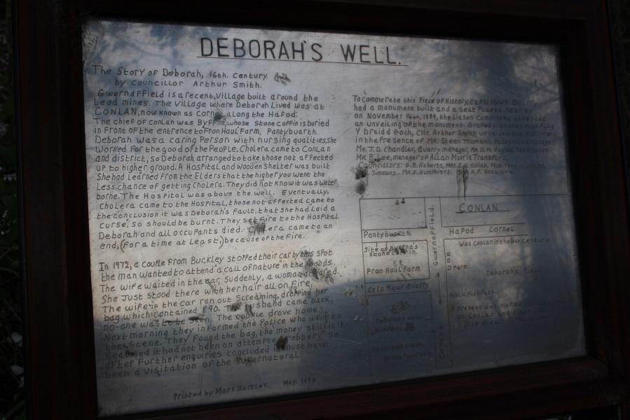 deborahs well3