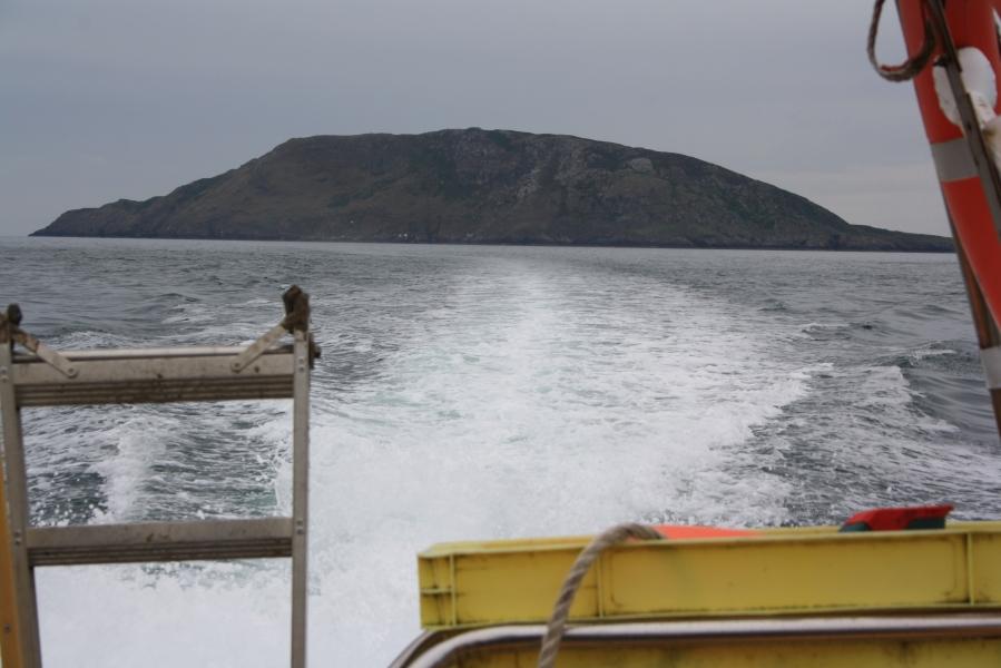 Bardsey Island  - wellhopper