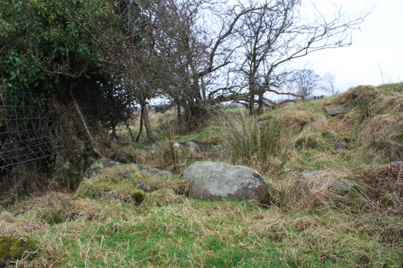 Ffynnon Rhedyw Llanllyfni